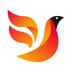火鸟门户v4.0安卓Android版