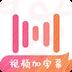 绘影字幕v3.9安卓Android版