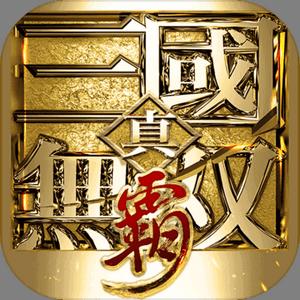 真三国无双霸v0.0.14安卓Android版
