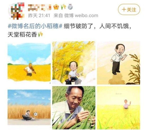 微博名后的小稻穗设置步骤 微博名后的小稻穗图