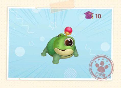 摩尔庄园手游许愿龟作用是什么 许愿龟在哪儿
