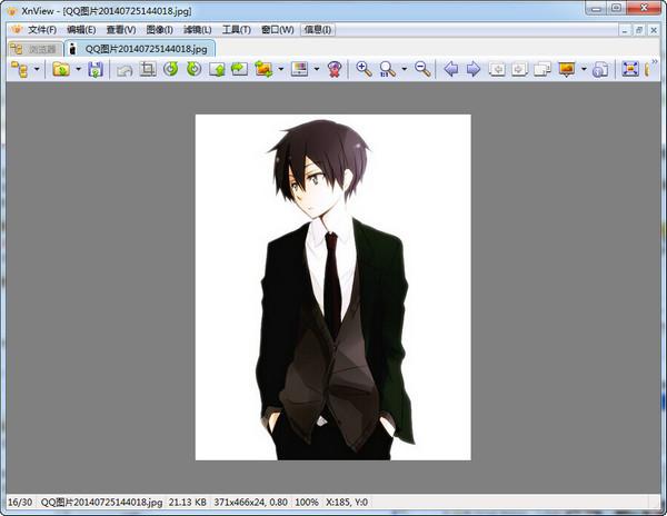 XnViewClassicV2.49.3.0绿色多语版