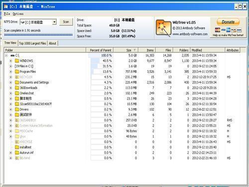WizTree中文版V3.35.0官方版