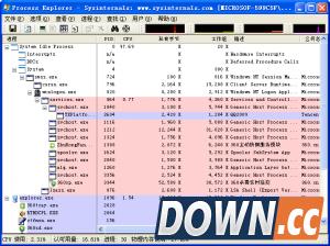 Process Explorer(进程管理) V16.03 绿色汉化版