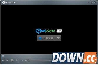 RealPlayerHD V16.0.5.36 官方版