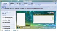 WindowBlinds(桌面美化软件)V8.0免费版